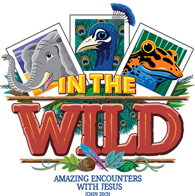Into the Wild, Vacation Bible School logo. Three cards display an elephant, a peacock, and a frog.